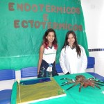 feira-de-ciencias-fund2-11