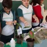 feira-de-ciencias-fund1-48