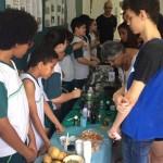 feira-de-ciencias-fund1-65
