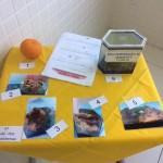 feira-de-ciencias-fund1-87
