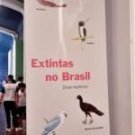museu-catavento-106