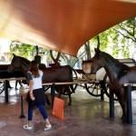 museu-catavento-93