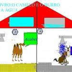 CAMELO ANE