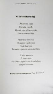 Sarau-Brasil-2017 (11)