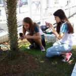 Investigando Plantas (15)