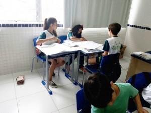 5º ano paisagens brasileiras (15)