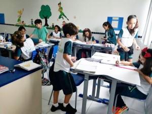 5º ano paisagens brasileiras (7)