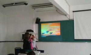 8º ano English Countries (9)