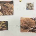 4º ano matérias-primas e seus protudos (6)