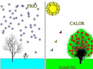 FRIO CALOR SAMUEL