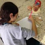 8ºano Ciências Sistema Circulatório (2)