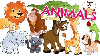 3º ano Animais Inglês