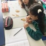 3.º divisão matematica (6)