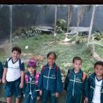 Zoológico (109)