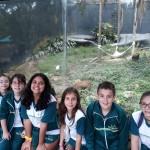 Zoológico (111)