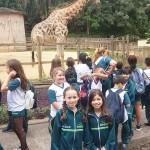 Zoológico (40)
