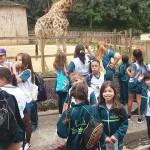 Zoológico (41)