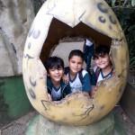 Zoológico (70)