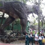Zoológico (74)