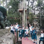 Zoológico (82)