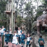 Zoológico (83)