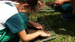 1.º ano Plantio da Horta (2)
