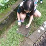 4.º 5.º ano horta 2019 (8)
