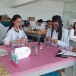 Feira de Ciências Ensino Médio (4)